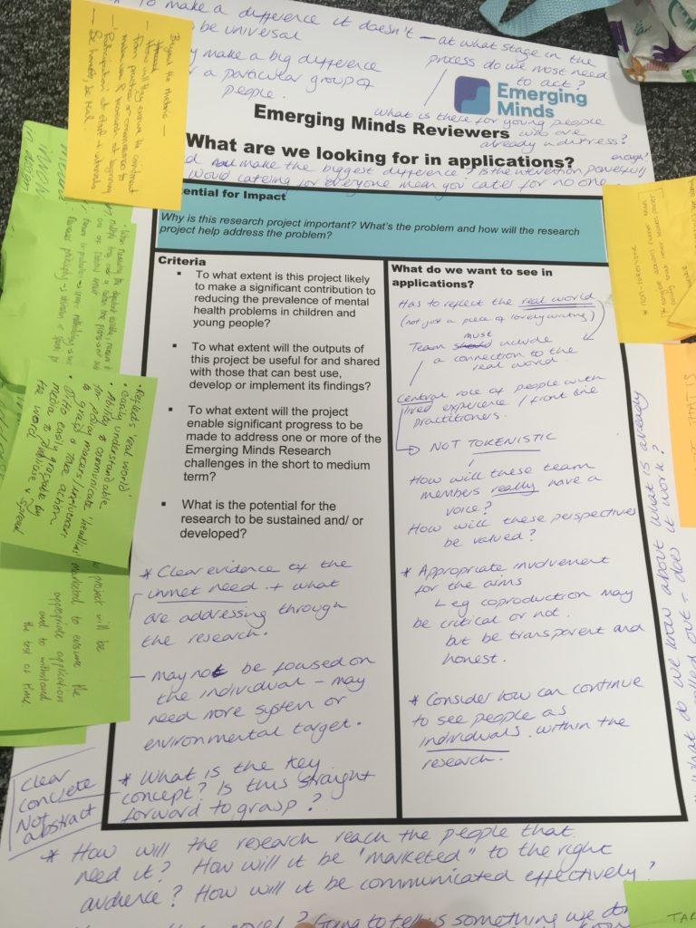 Photo of annotated posters discussing the best kind of projects which reviewers would consider funding
